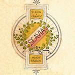Логотип шкода 1895-1905  с именем Slavia