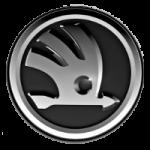 Современный логотип шкода